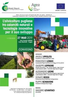 Convegno: L'olivicoltura pugliese