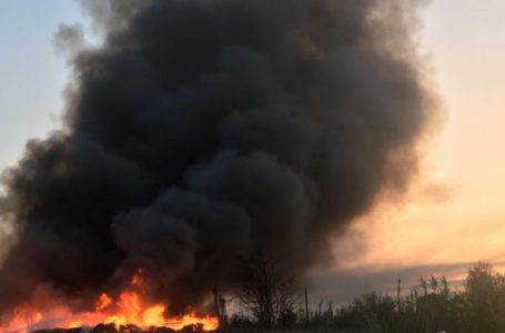 Bruciature illegali nei cinque reali siti: vertice in Prefettura