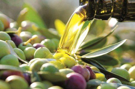 Produzione europea di olio d'oliva