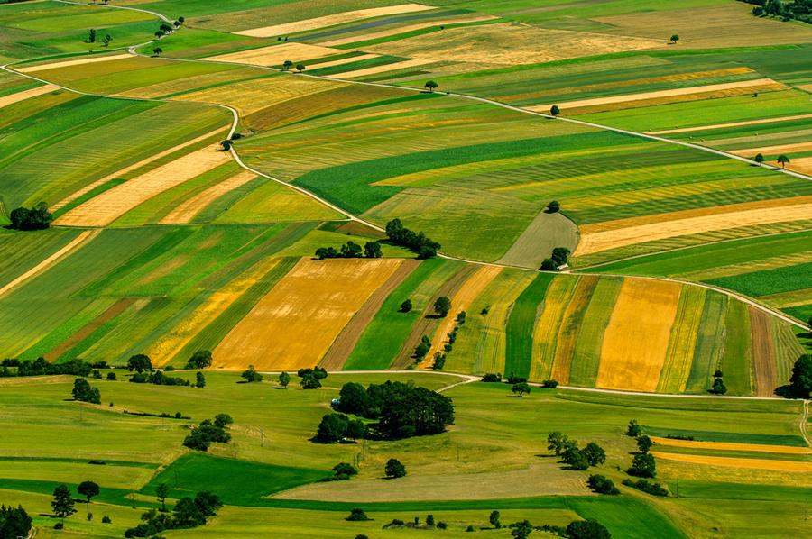 Ritorna la CAMBIALE AGRARIA