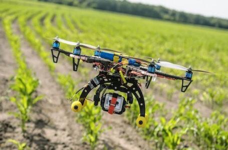 Workshop: Strumenti dell'Agricoltura di Precisione a Supporto delle Aziende Agricole – L'agricoltura di Precisione in campo